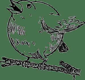 round robin leads