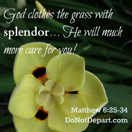 God Will Care For You Matthew 630 Do Not Depart