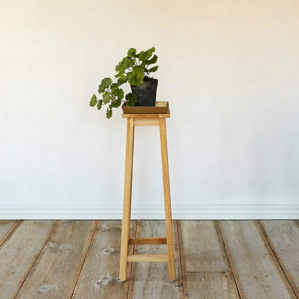 Indoor Plant Decoration Ideas