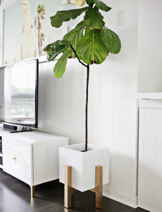 36+ DIY Plant Stand Ideas for Indoor and Outdoor Decoration on Plant Stand Ideas  id=79685