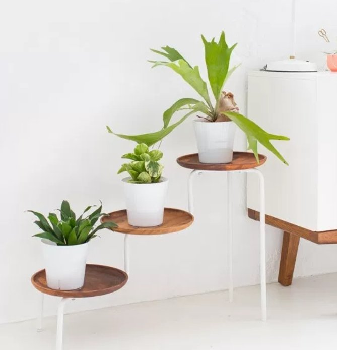 36+ DIY Plant Stand Ideas for Indoor and Outdoor Decoration on Plant Stand Ideas  id=39684