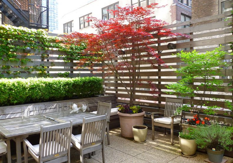 27 Awesome DIY Outdoor Privacy Screen Ideas With Picture