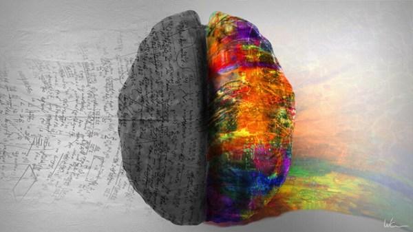 Как определить какое полушарие мозга более развито ...