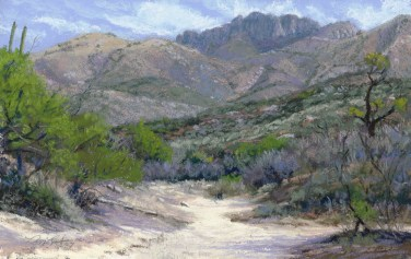 Catalina Dry Wash by Western pastel landscape artist Don Rantz