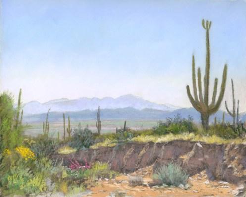 Desert Wash by Western pastel landscape artist Don Rantz