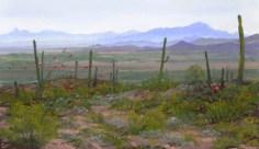 Ocotillo by Western pastel landscape artist Don Rantz