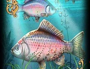 os peixes taror online