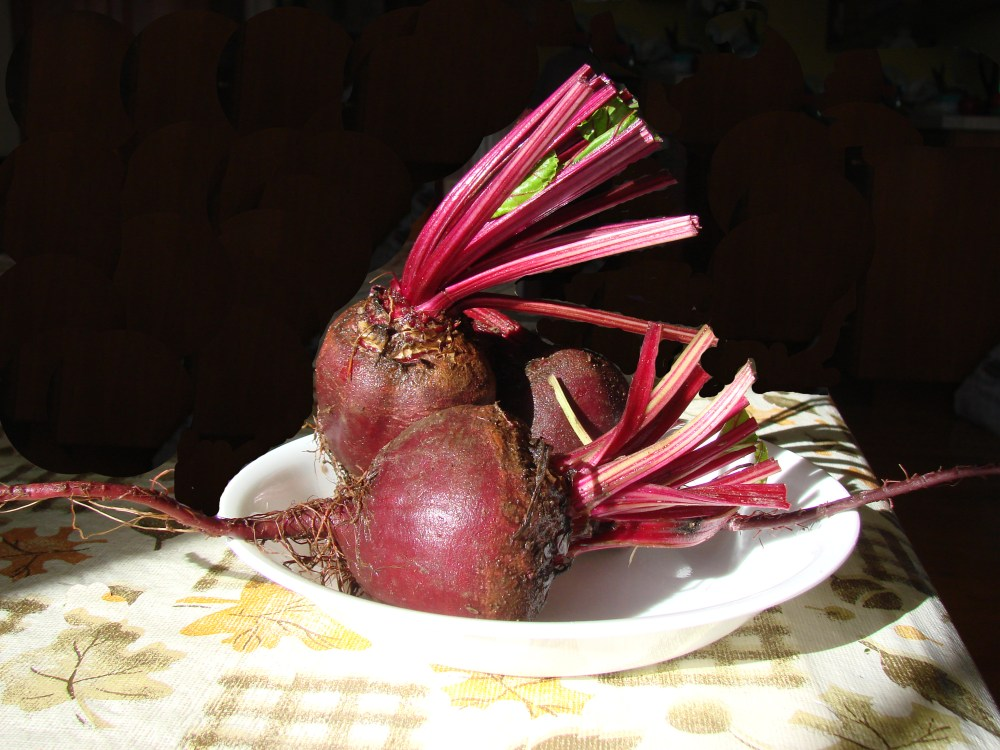 September Beets (2/6)