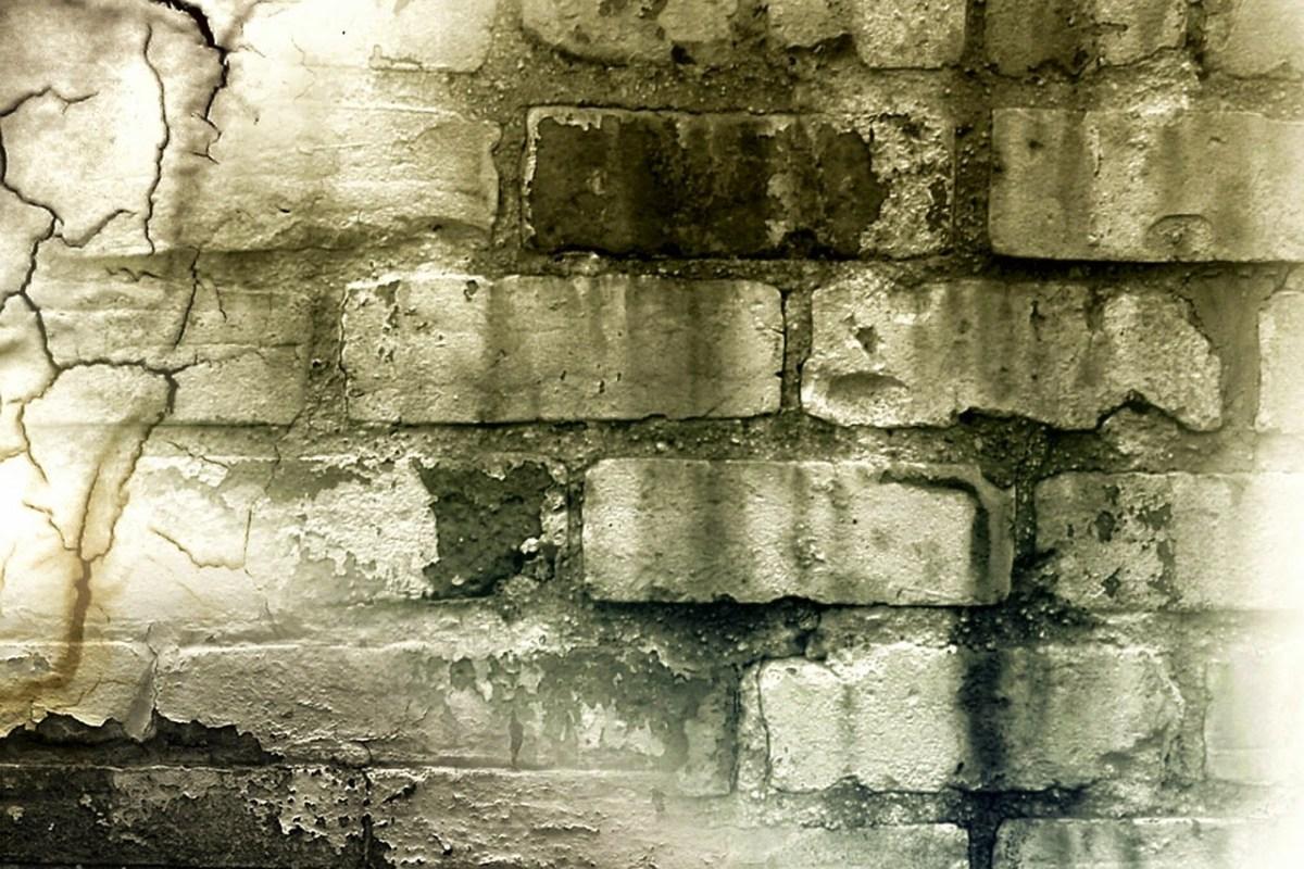Brick Wall – Jacob Huber (bef 1860–?)