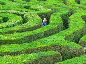 Maze, Horningsham, Wiltshire, UK Photo by Brian Robert Marshall via Geograph - CC License 2.0.