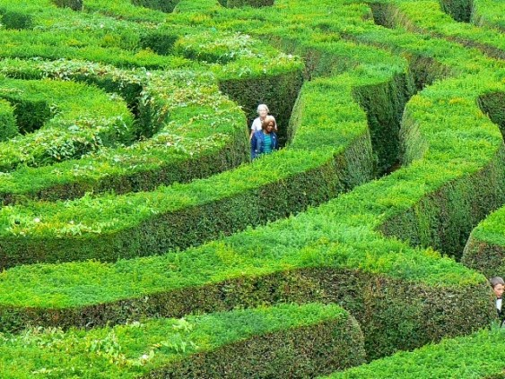 Photo by Brian Robert Marshall of people walking in a maze near Horningsham, Wiltshire, Great Britain