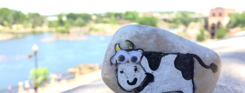 Rock with a hand painted cow on it