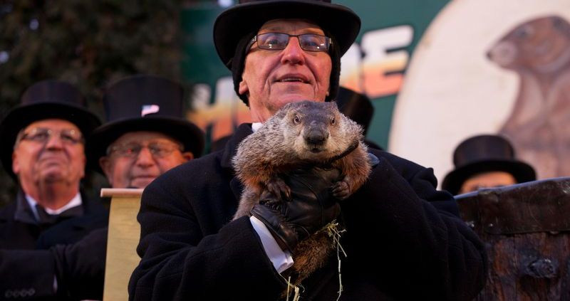 Punxsutawney Phil being held on Groundhog Day