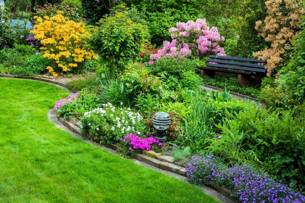 help your garden look amazing