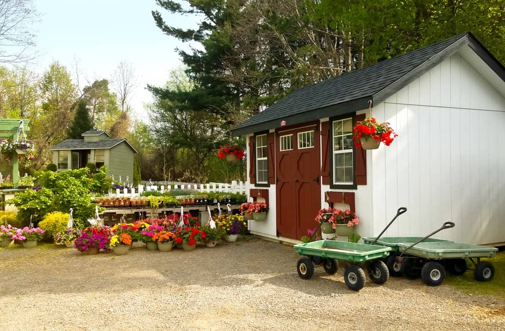 Top 8 Steps to Garden Shed Security