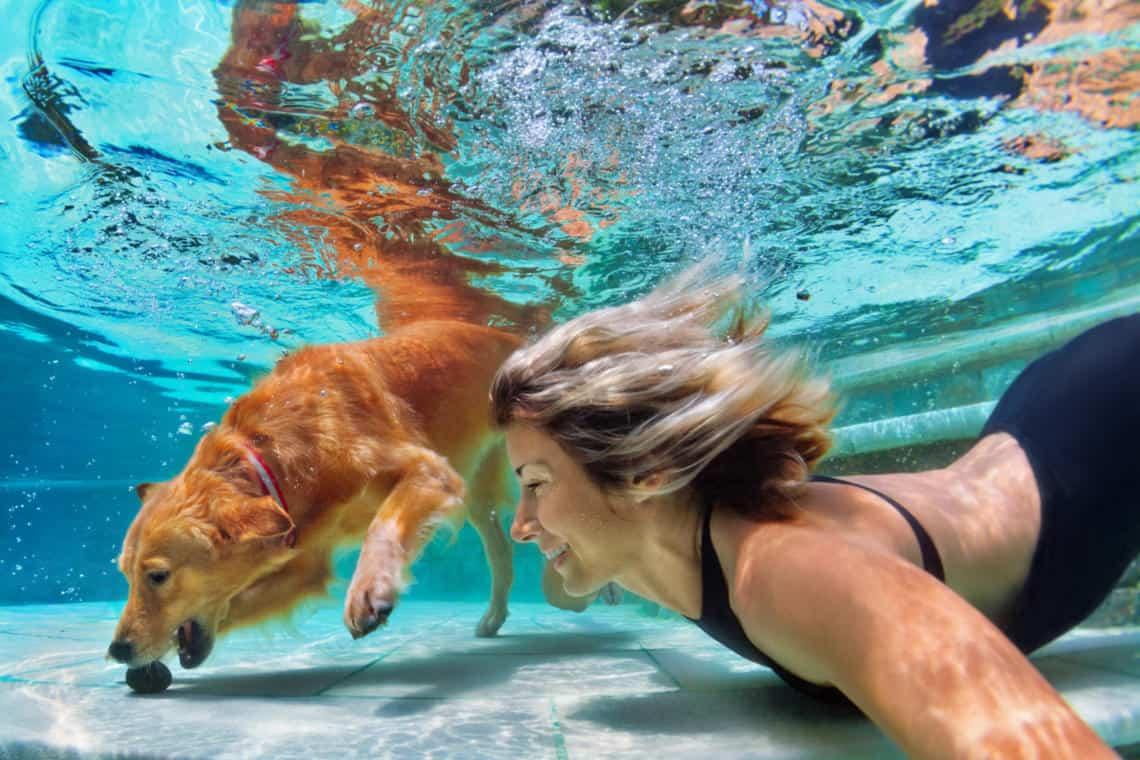 Swimming Pool Installation: Should I Or Shouldn't I?