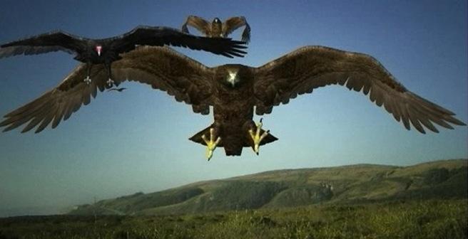 birdemic 2 top