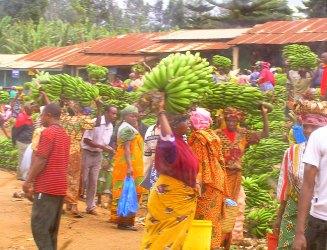 Kili Colour.Passing through a banana market on the way to our starting point of the Mt Kilimanjaro climb