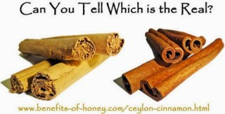 Cinnamon- are you using the real stuff? Advice Health