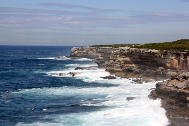 The rugged coastline at Botany Bay National Park.