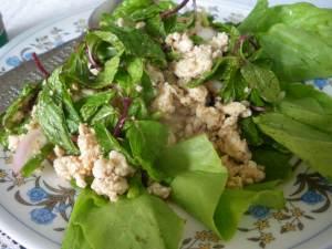 laap salad in laos vientiane