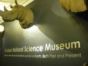 free entry museum durban south africa