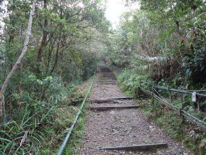 start of mount kinabalu hike