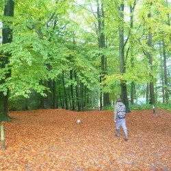 Foraging For Food in the Forest of Dean in Gloucestershire, England