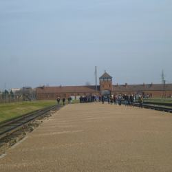 Day Tour of Nazi Concentration Camps with Mosquito Hostel in Krakow, Poland: Part 2 - Touring Auschwitz II, Birkenau Camp