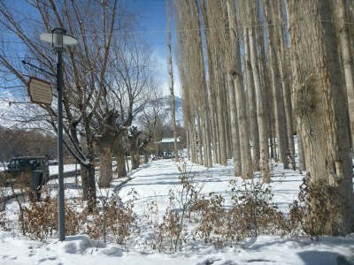 Khorog City Park