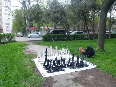 Chess at Erkindik Park