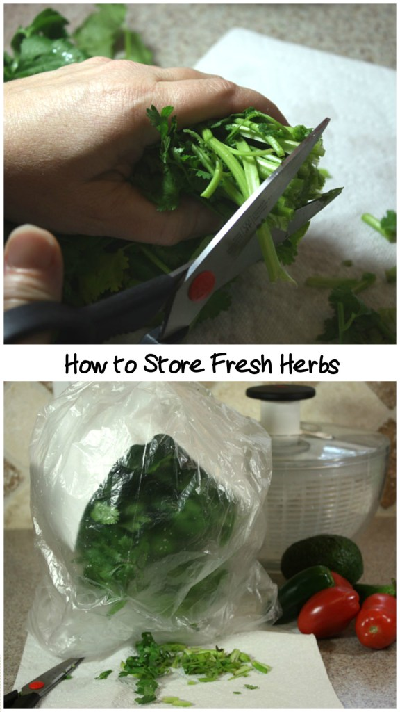 How to Store Fresh Herbs - by Don't Sweat The Recipe