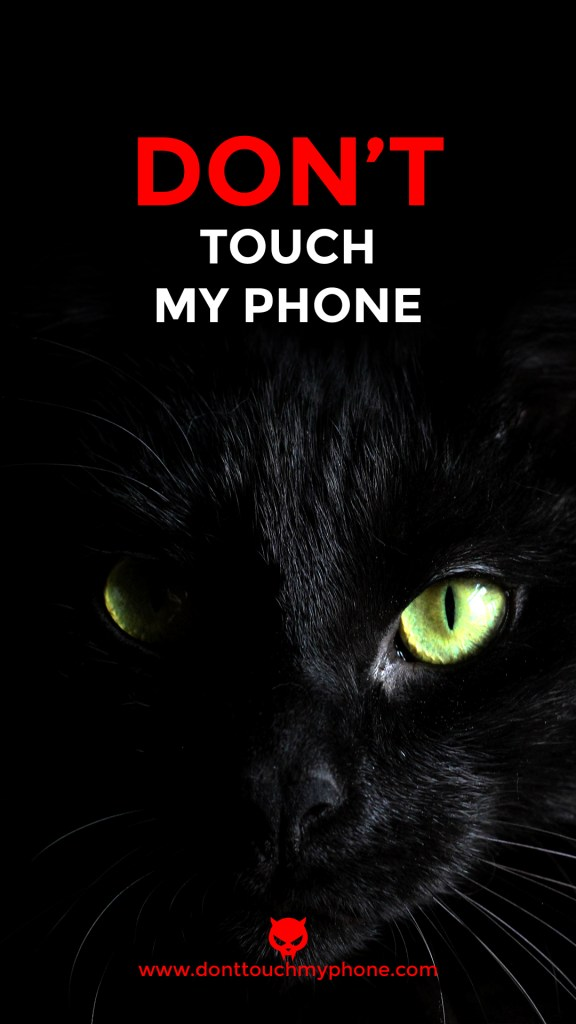 Don T Touch My Phone Cute Cat Wallpapers Dont Touch My Phone