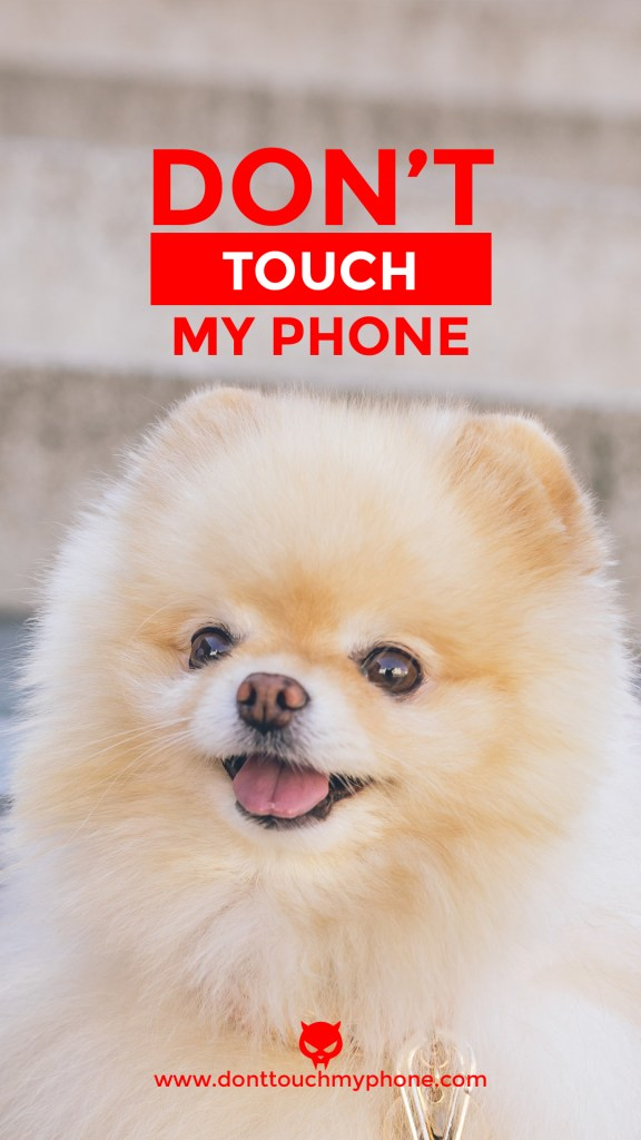 Don T Touch My Phone Cute Dog Wallpapers Dont Touch My Phone