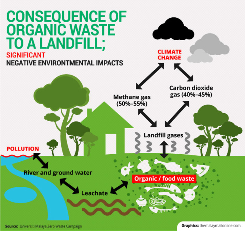 Consequence of organic waste to a landfill