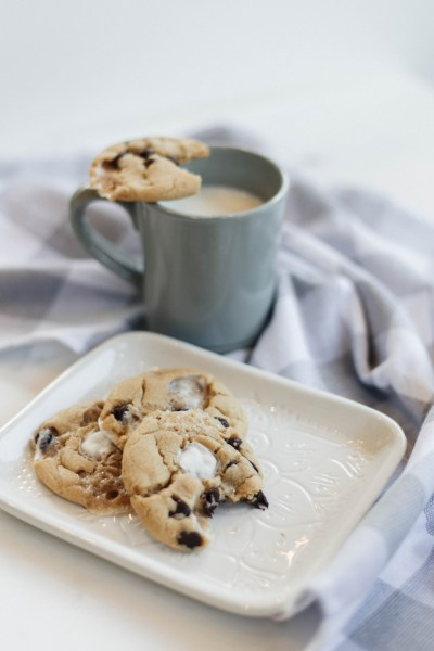 Peanut Butter Marshmallow Chocolate Chip Cookie
