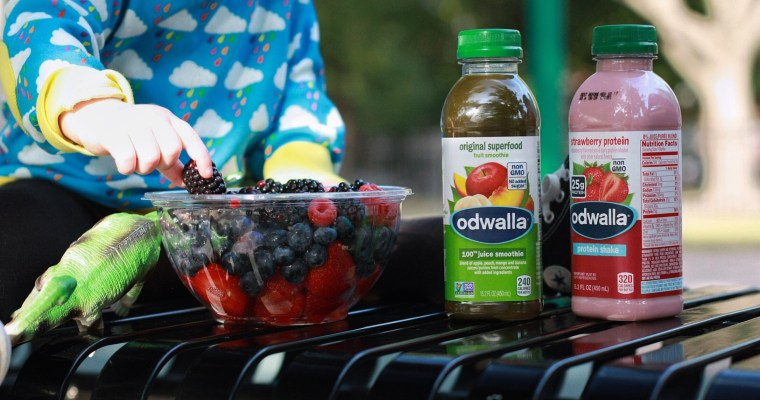 Nourish on the Go with Odwalla!