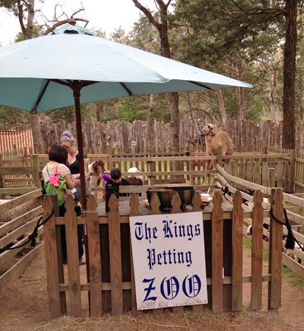 The Kings Petting Zoo