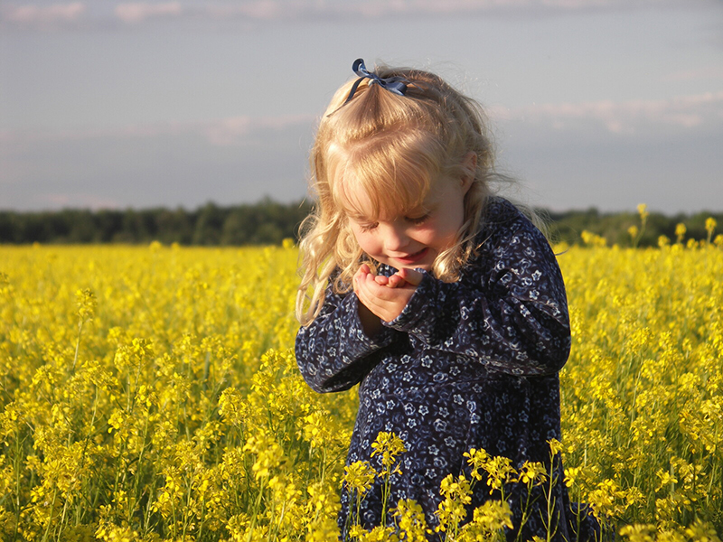 """A young girl with blond hair stands in a field of yellow flowers wearing a dark blue dress and looks joyfully at something she holds in her hand. Nature's restorative properties are expressed in this phrase: """"the land knows you, even when you are lost."""""""