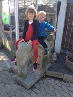 Ridetur på elefanten - 2014