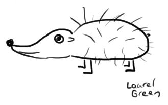 a doodle of a hedgehog