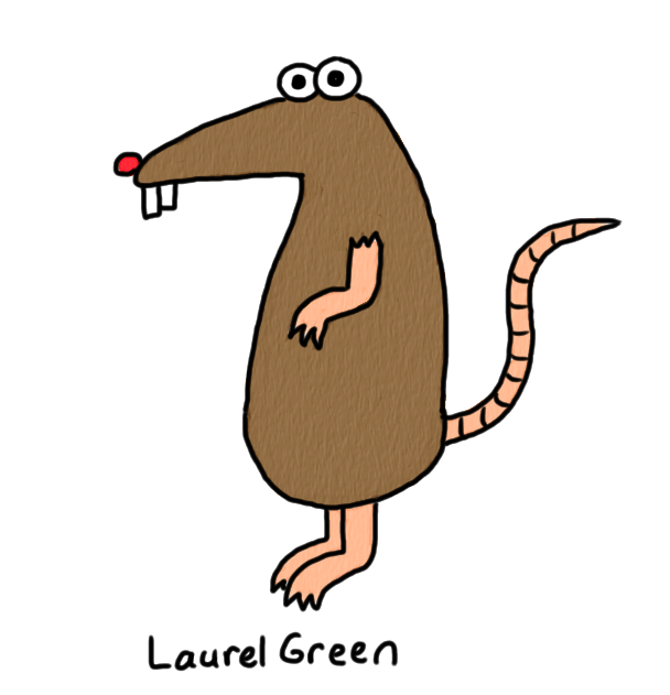 a drawing of a rat