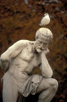 Man thinking with bird