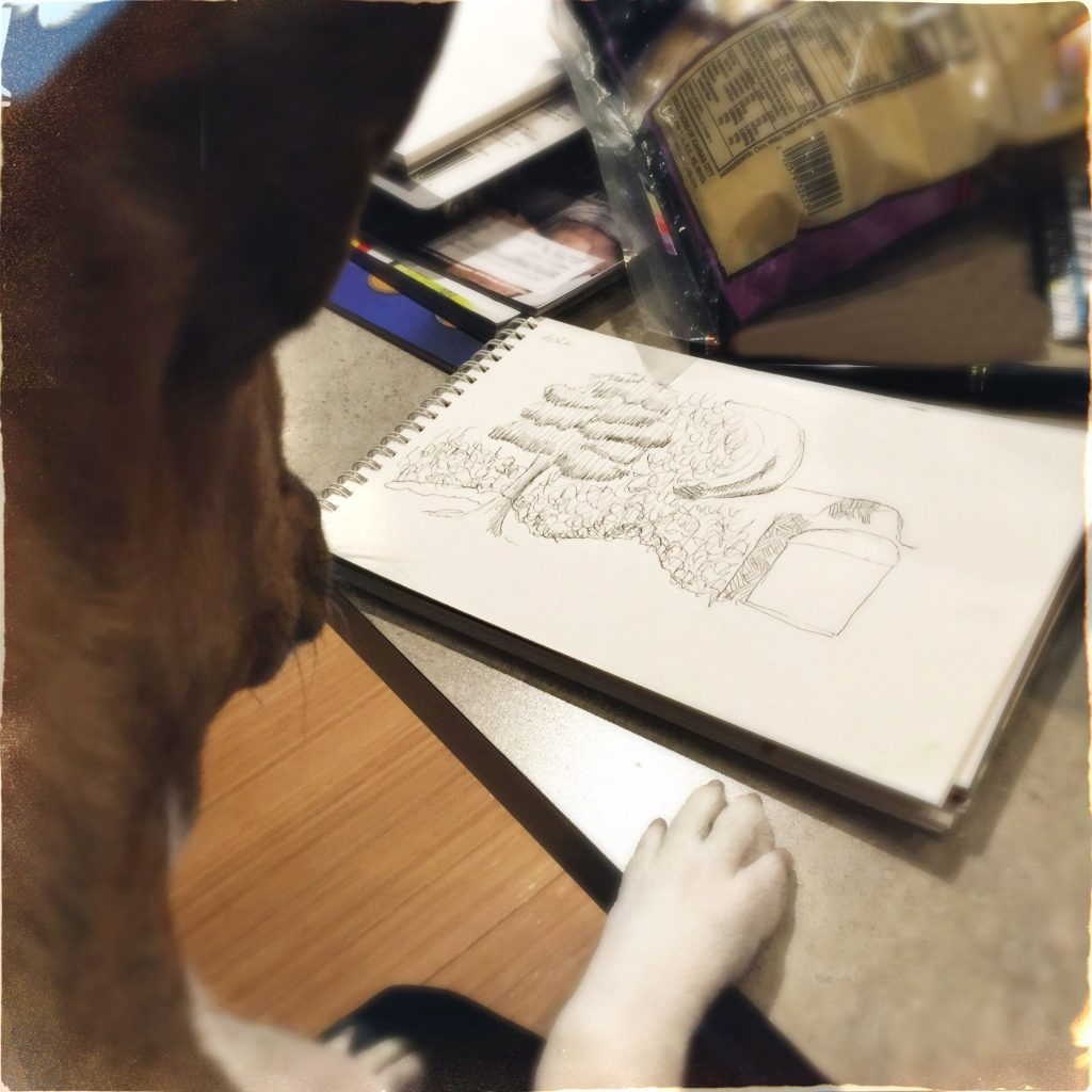 Dog Looking At Drawing
