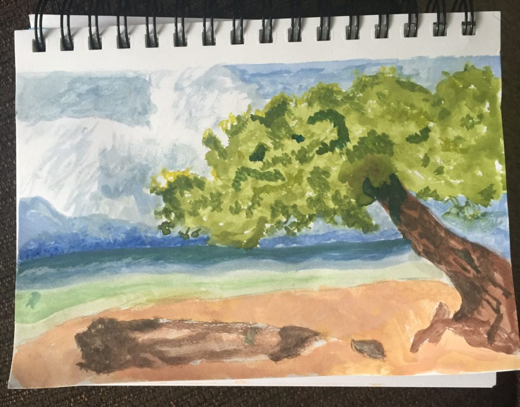 Aruba Watercolor Painting by Aesha Beattle Doodlewash