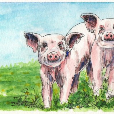 Les Deux Cochons Aquarelle