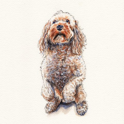Rufus Dog Pet Portrait Watercolor