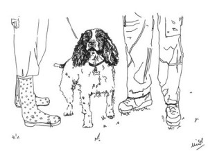 Project Dogwalk by Minnie Teckman
