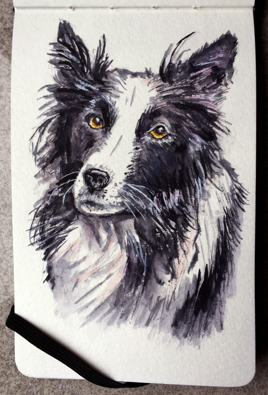 My First Dog by Charlie O'Shields