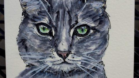 Tabby Cat by Charlie O'Shields